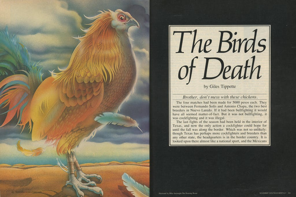 Birds of Death