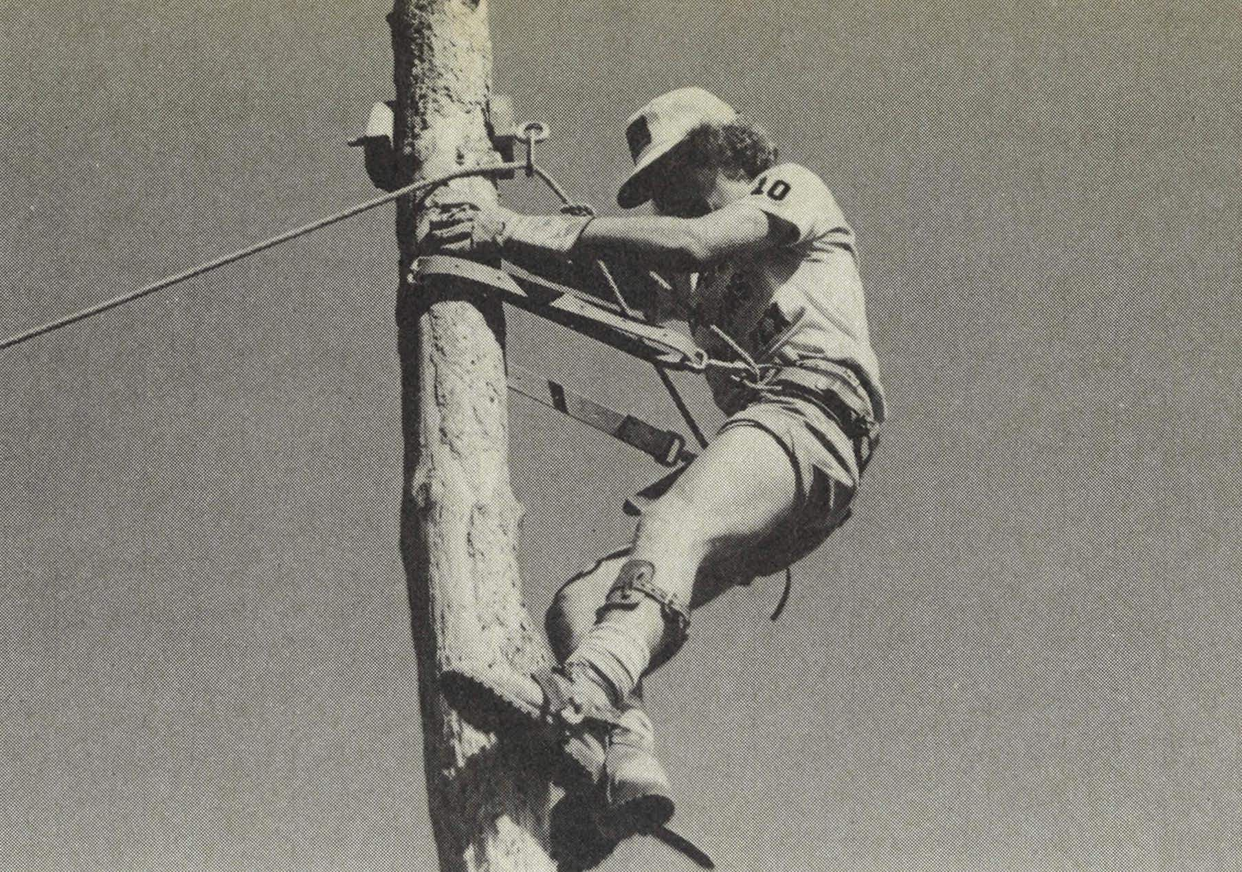 At Philmont, scouts learn such necessary skills as how to scale a denuded tree trunk.