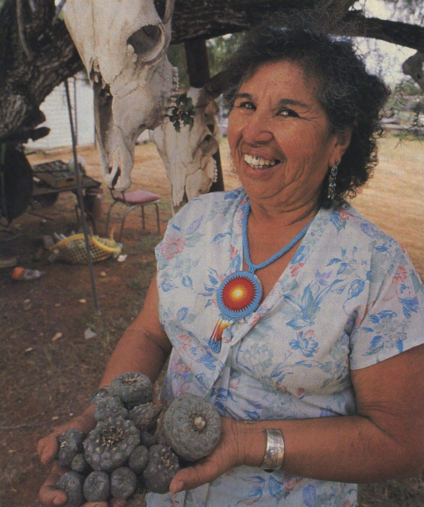 Isabel Lopez's heaping handful of peyote is but a small sample of the hundreds of thousands bought by Indians each year.