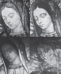 Not Made By Hands The Miraculous Images of Our Lady of Guadalupe and the Shroud of Turin