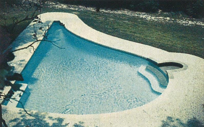 In 1986 Gerald Johnson was performing as many as seventeen augmentations a day. As a tribute to his specialty, he built a pool shaped like a breast.