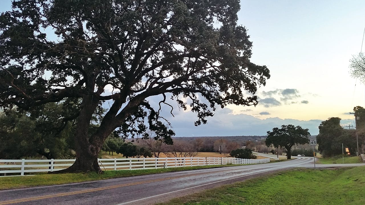 Texas Highway 237, between Carmine and La Grange, is a beautiful country drive year-round.