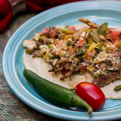 Cascabel Machacado taco san antonio