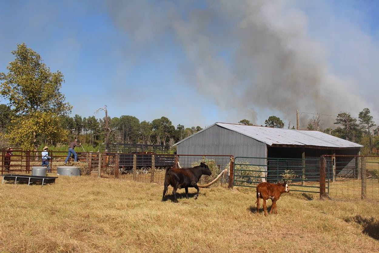 Bastrop County fire