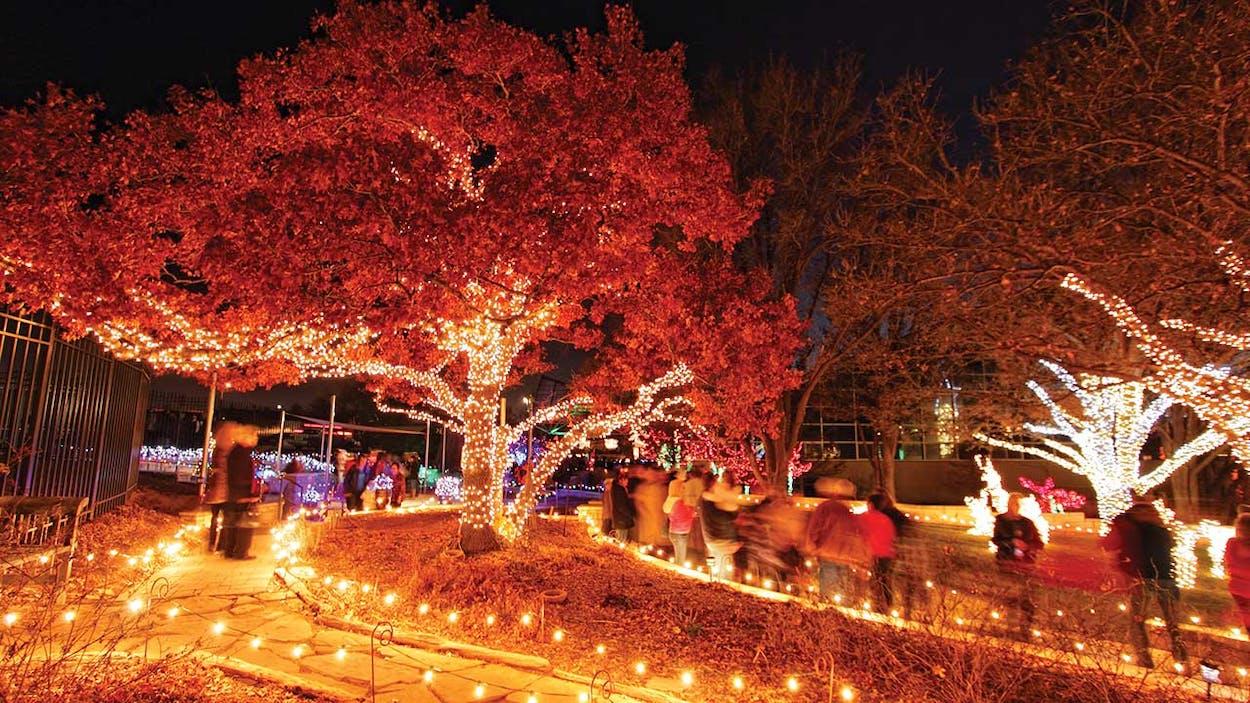 Christmas Garden of Lights, Amarillo