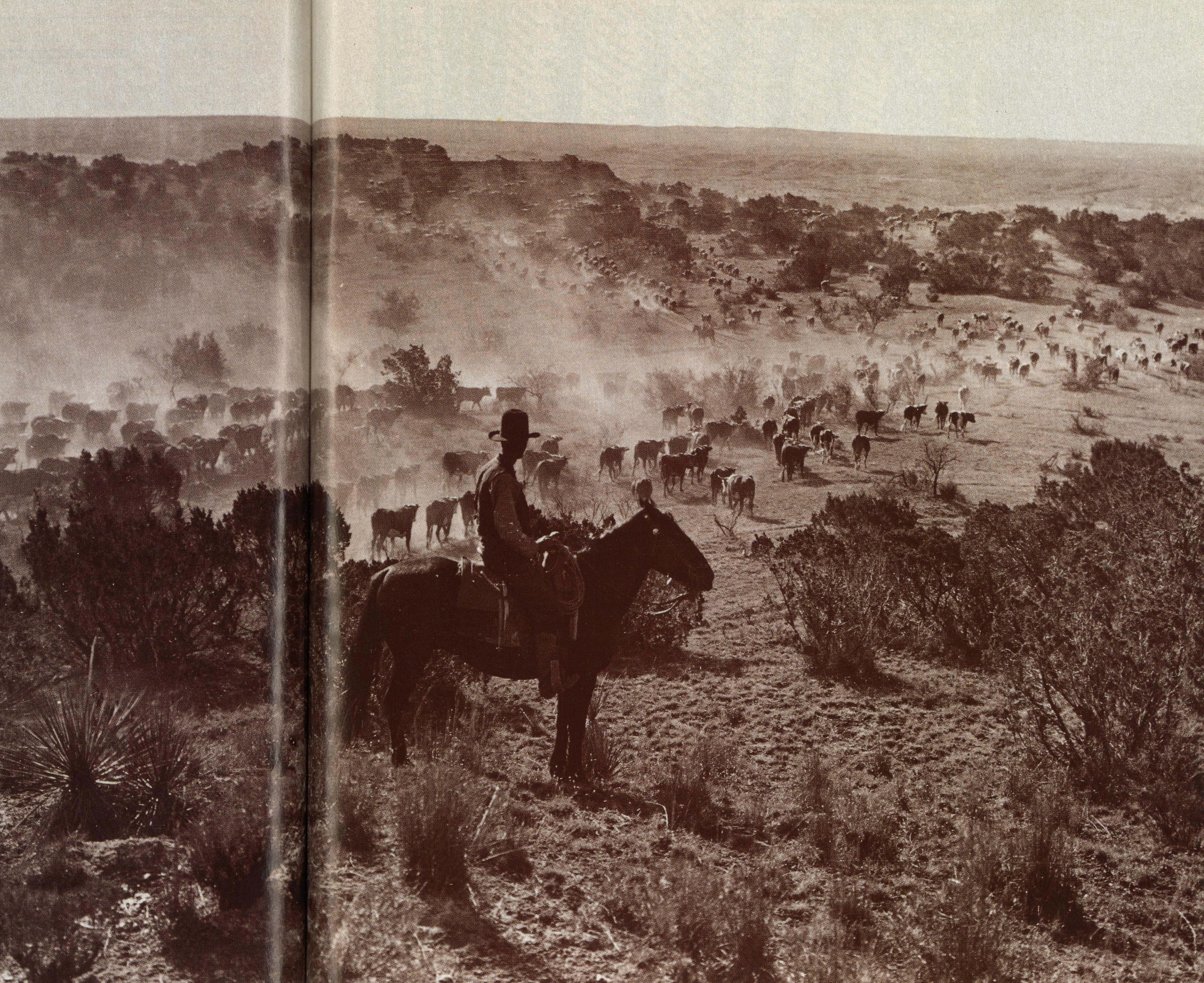 Their history was brief, but the trail drives live forever in the myths of the cowboy and the boundless West.