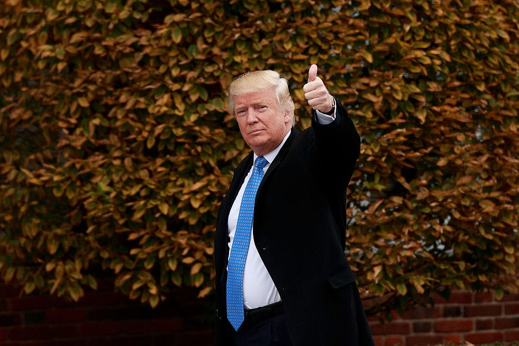 President-elect Donald Trump waves as he arrives at Trump International Golf Club for a day of meetings, November 20, 2016 in Bedminster Township, New Jersey.