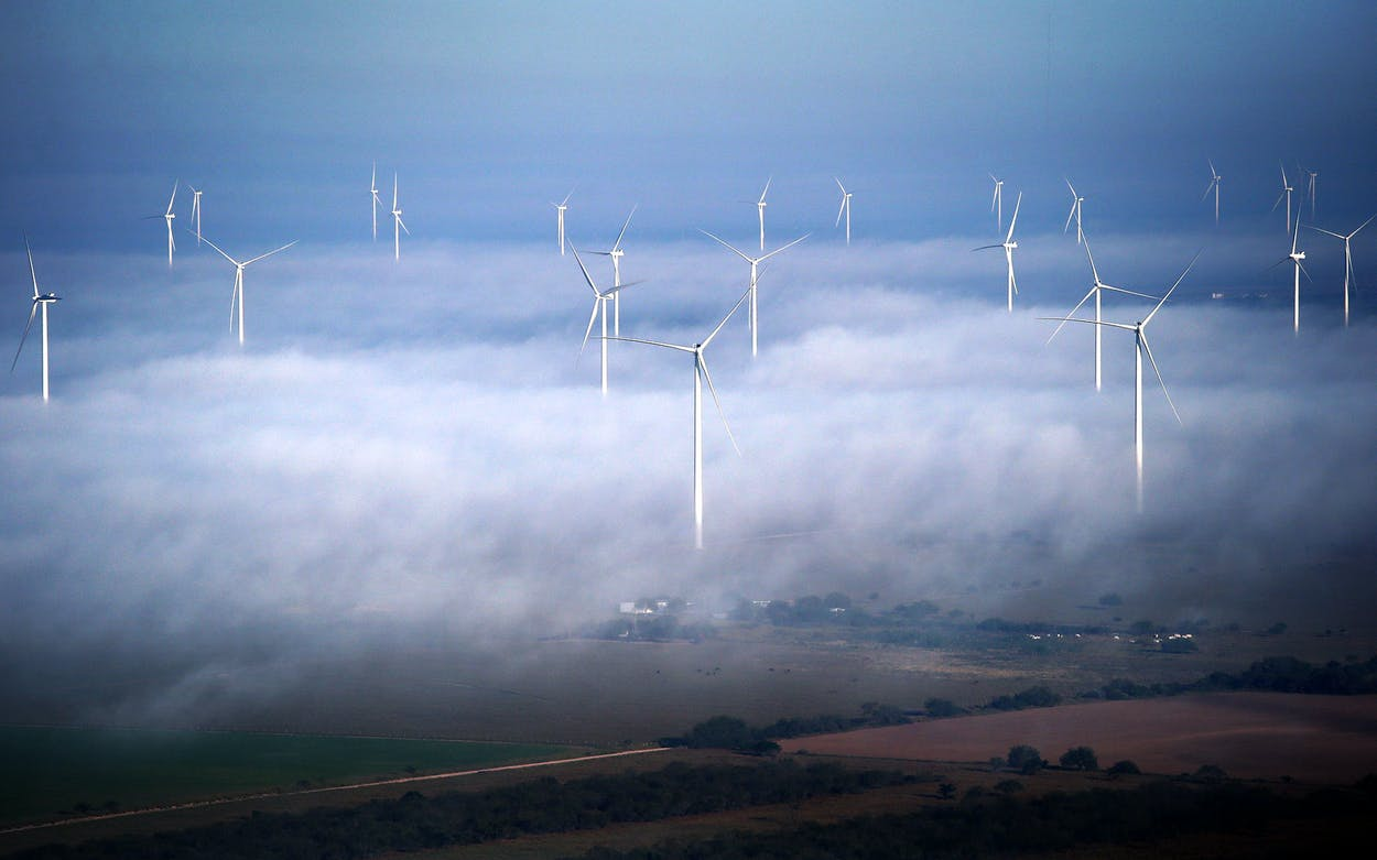 Windmills in La Grulla, TX