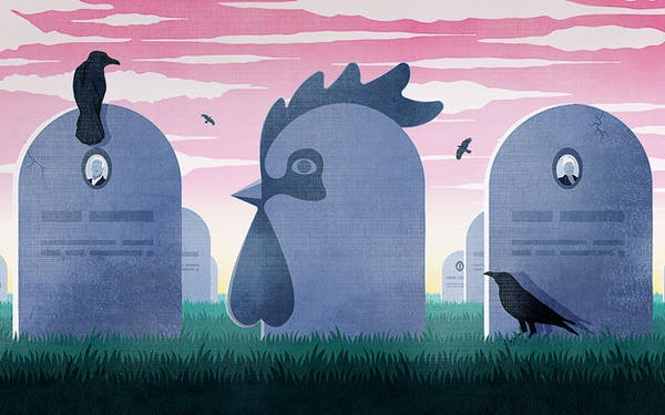 Meanwhile in Texas Chicken Funeral