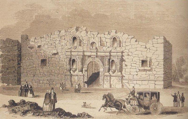 Alamo 1854