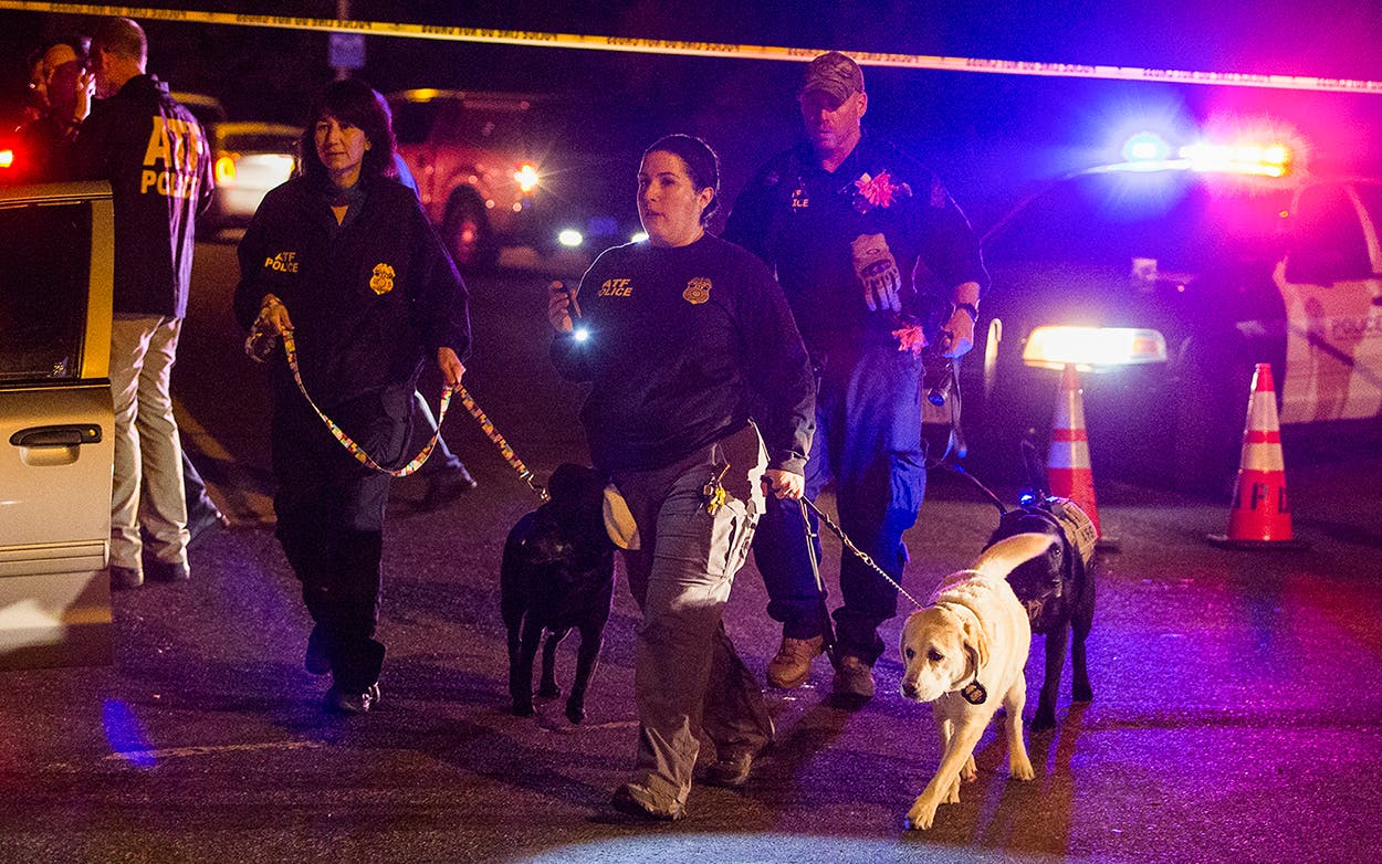 Police dogs and their handlers deploy at the scene of an explosion in southwest Austin, Sunday, March 18, 2018. Injuries were reported in the explosion, this one coming after three package bombs detonated earlier in the month in other areas of the city, killing two people and injuring two others.
