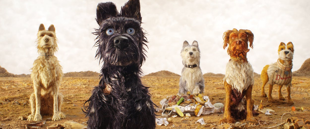 Rex, Chief, Duke (Jeff Goldblum), King and Boss in 'Isle of Dogs.'