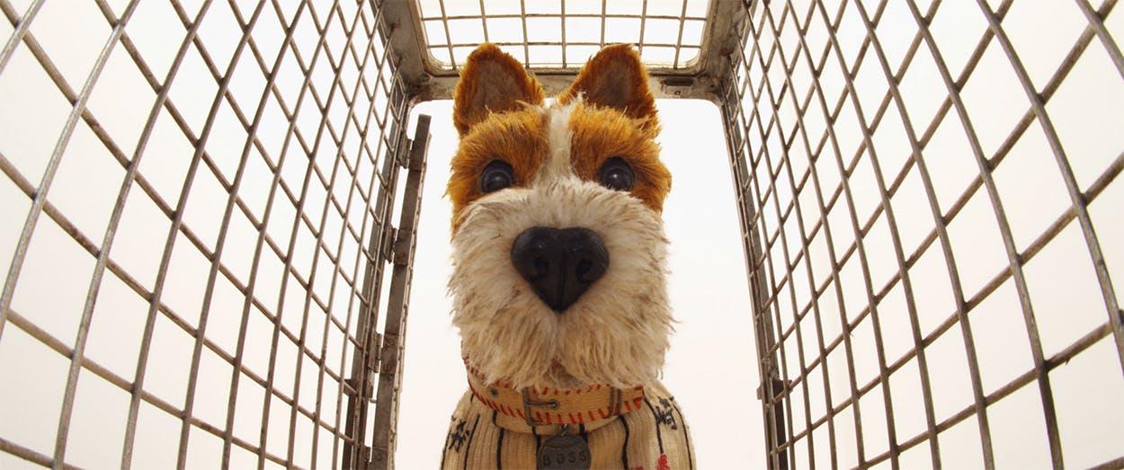 Boss's character is voiced by Bill Murray in 'Isle of Dogs.'