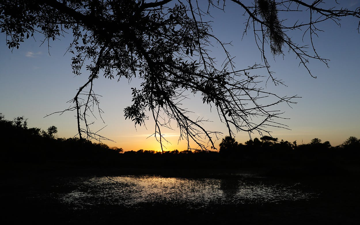 The sun sets over the Santa Ana National Wildlife Refuge, home to 400-plus species of birds and several endangered wildcats, in Alamo, Texas.