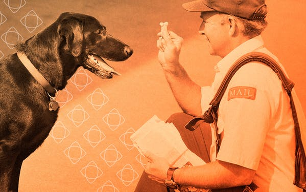 Post Office mailman with a friendly dog