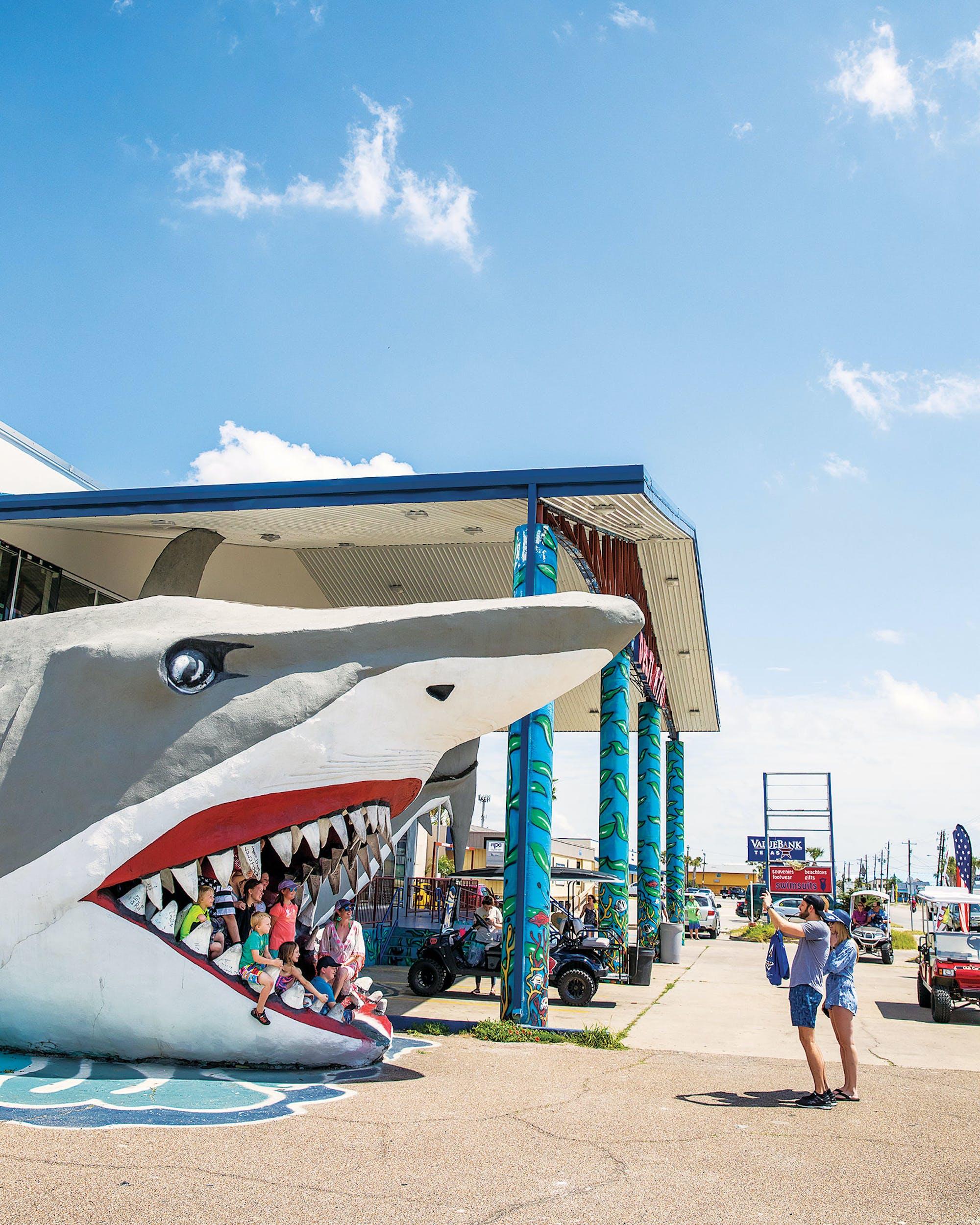 Shark Port Aransas harvey