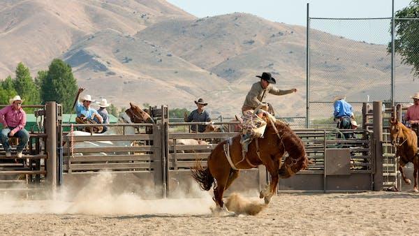 Summer Rodeo Season