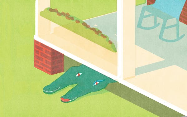 an illustration of two alligators in love under a house