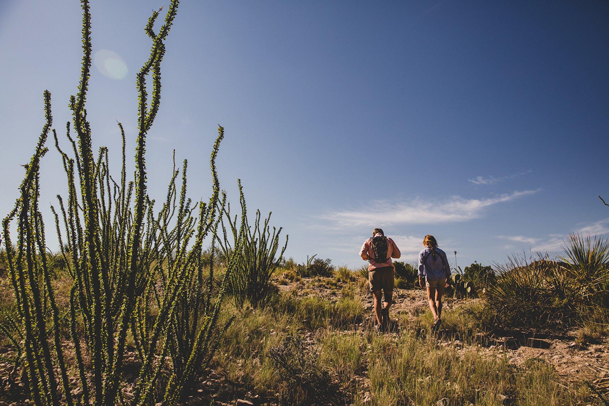 Explore Ranches Chihuahuan Maravillas Ranch