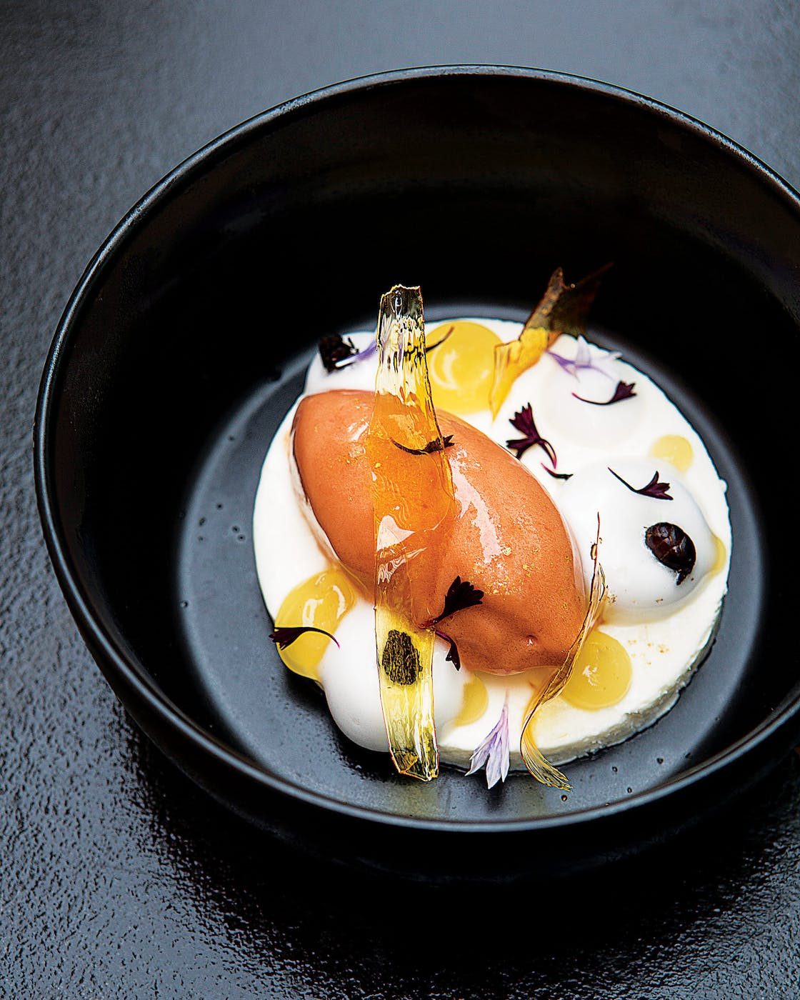 Chamomile mousse with guava sorbet and Oaxacan ants at Comedor.