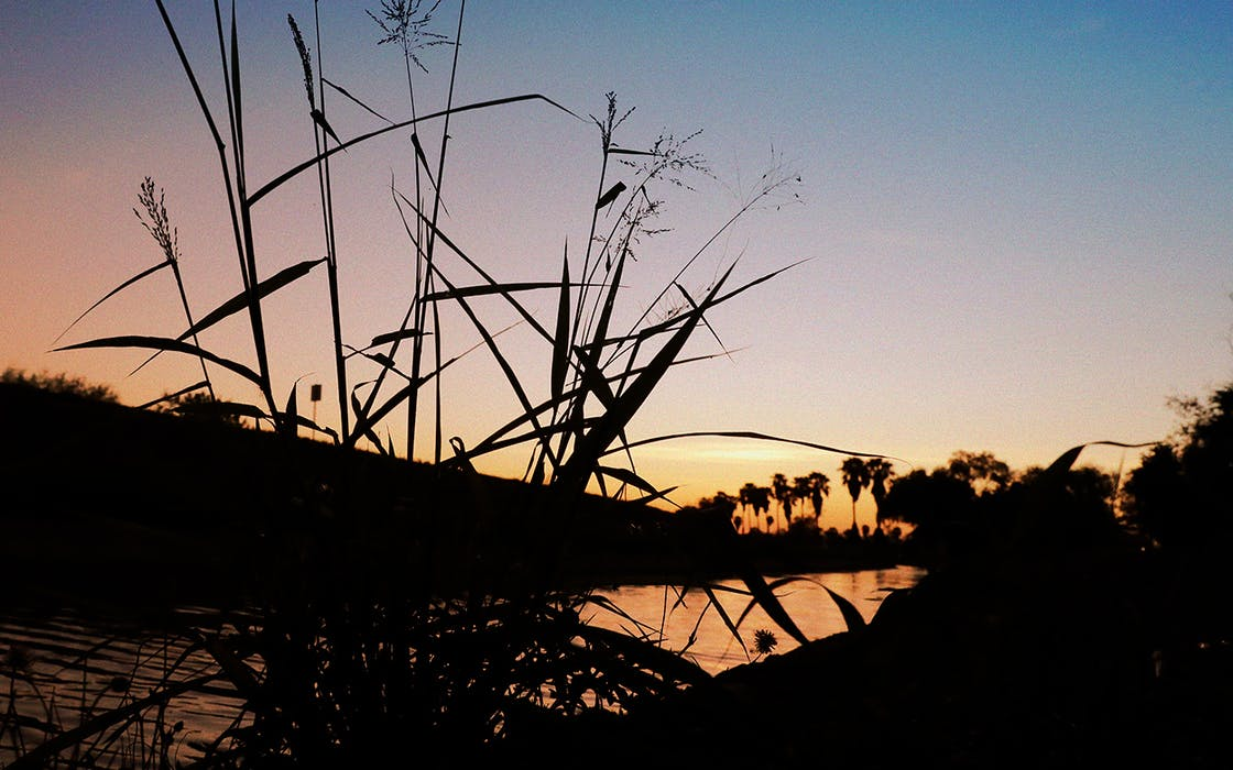 Is the Santa Ana Wildlife Refuge Still in the Crosshairs ...