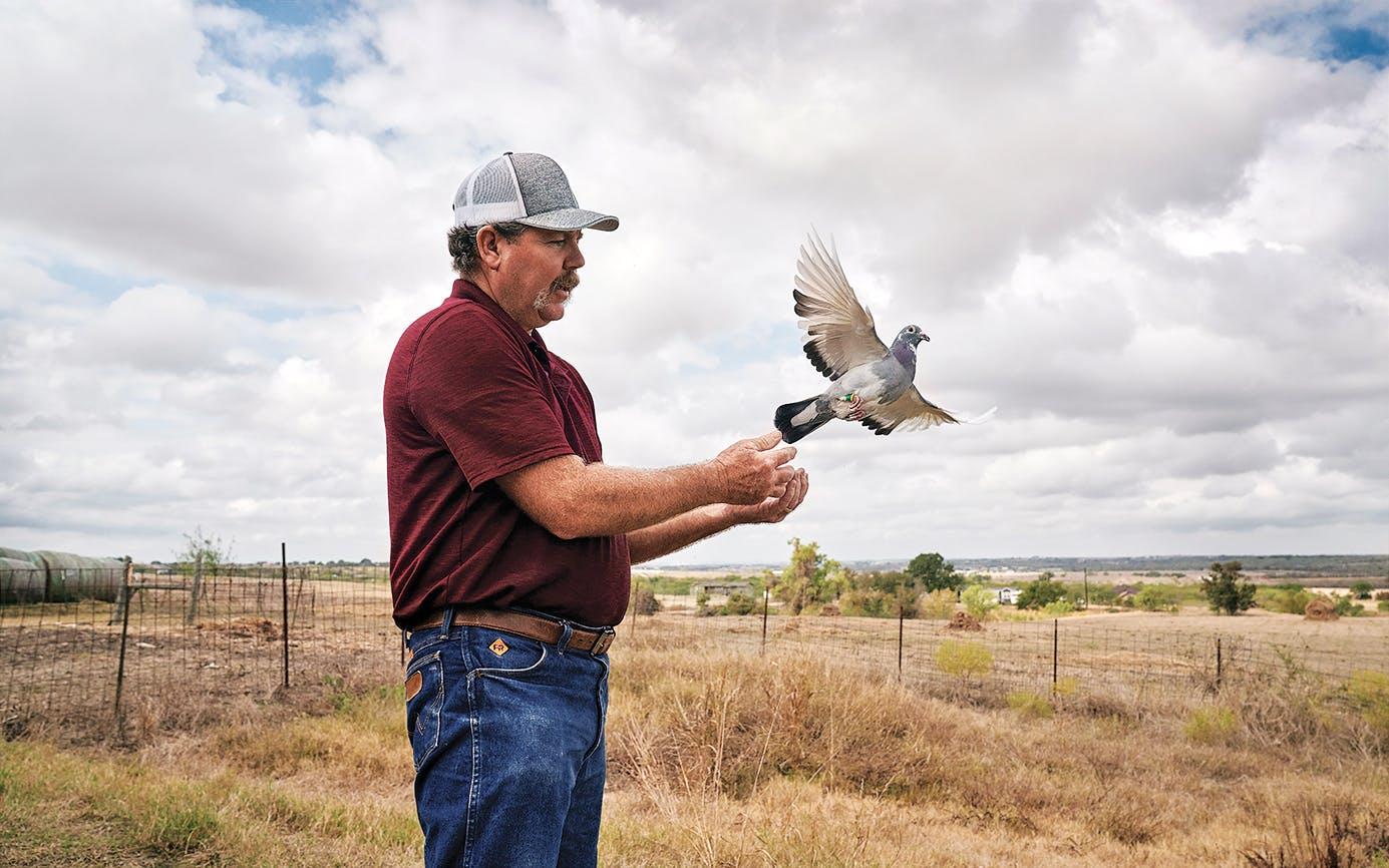 N//A T-Shirt Pigeon Racing Classic Bird Racers