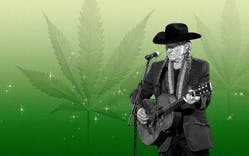 willie breaks up with weed illo