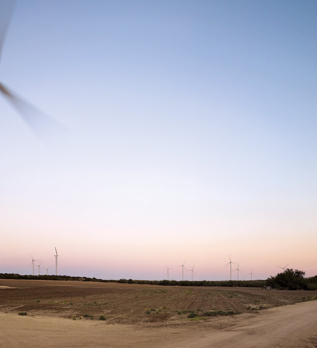 The Horse Hollow Wind Energy Center, just outside Sweetwater, one of the largest wind farms in the world.