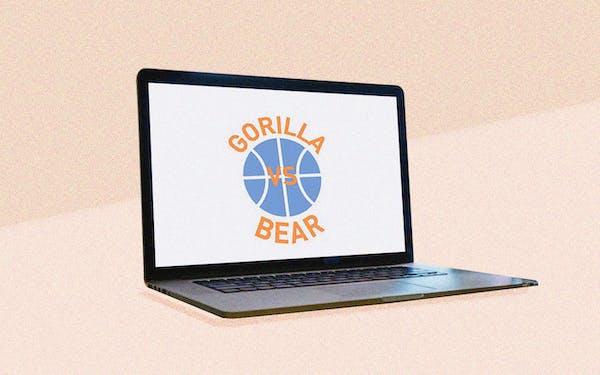 gorilla-vs-bear-website-blog