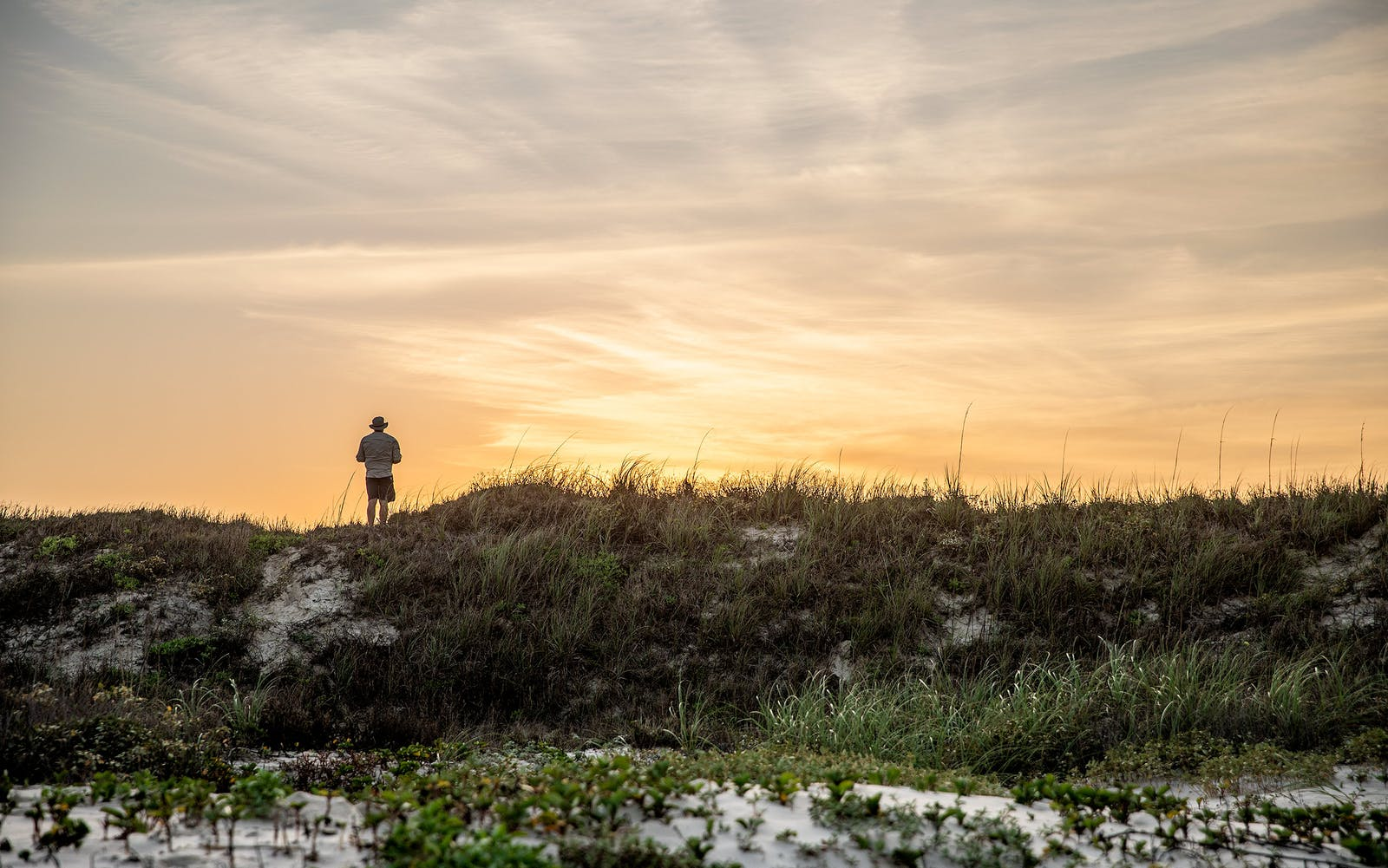 David Courtney stands on dunes at Padre Island National Seashore.