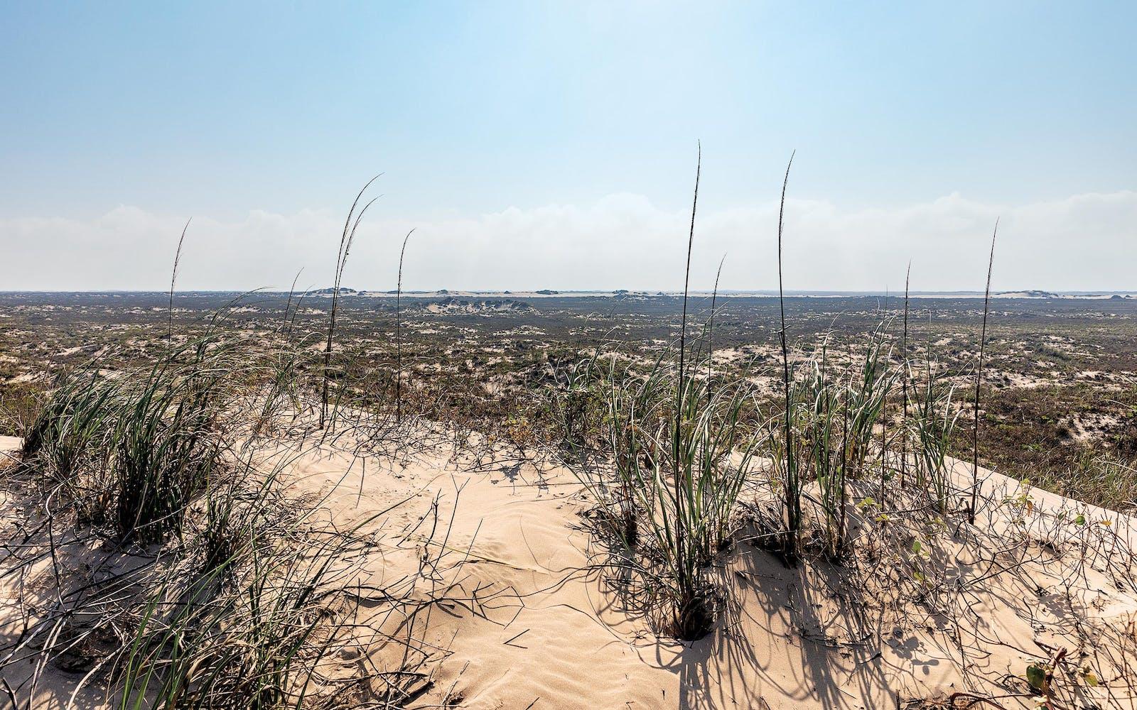 David Courtney, The Texanist, traverses Padre Island National Seashore