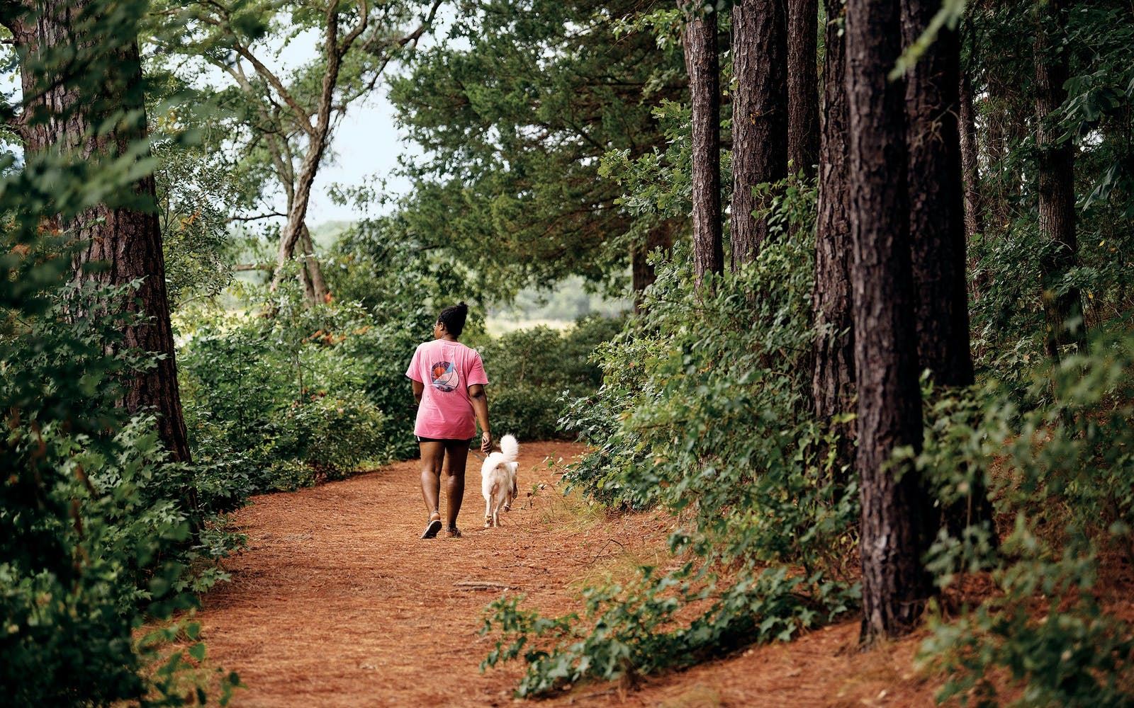Lakeshore trail