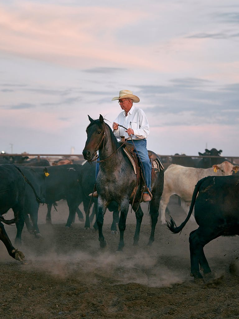 Billie Paul Preston managing the cattle at Cactus Feeders' Wrangler Feedyard in Tulia, near Amarillo, on July 25, 2020.