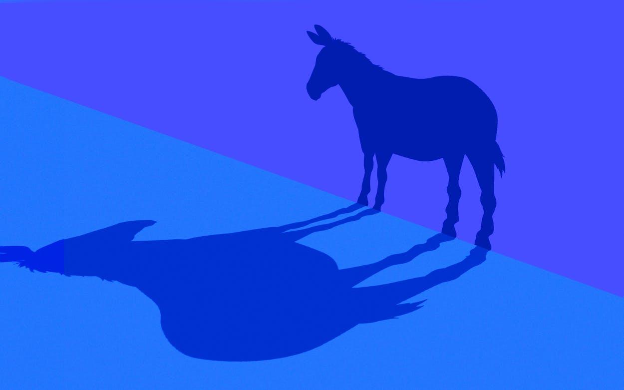 democrats-2020-election
