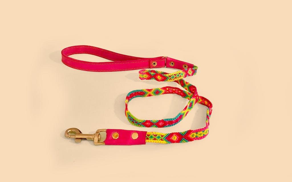 kids-pets-leash