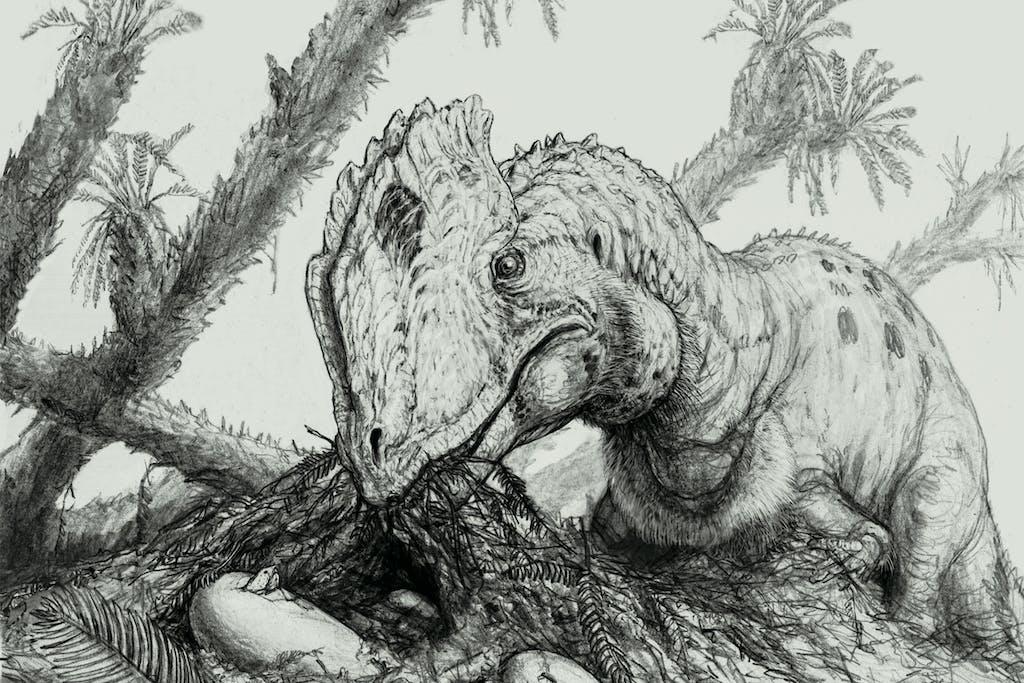 brian-engh's-speculative-portrait-dilophosaurus