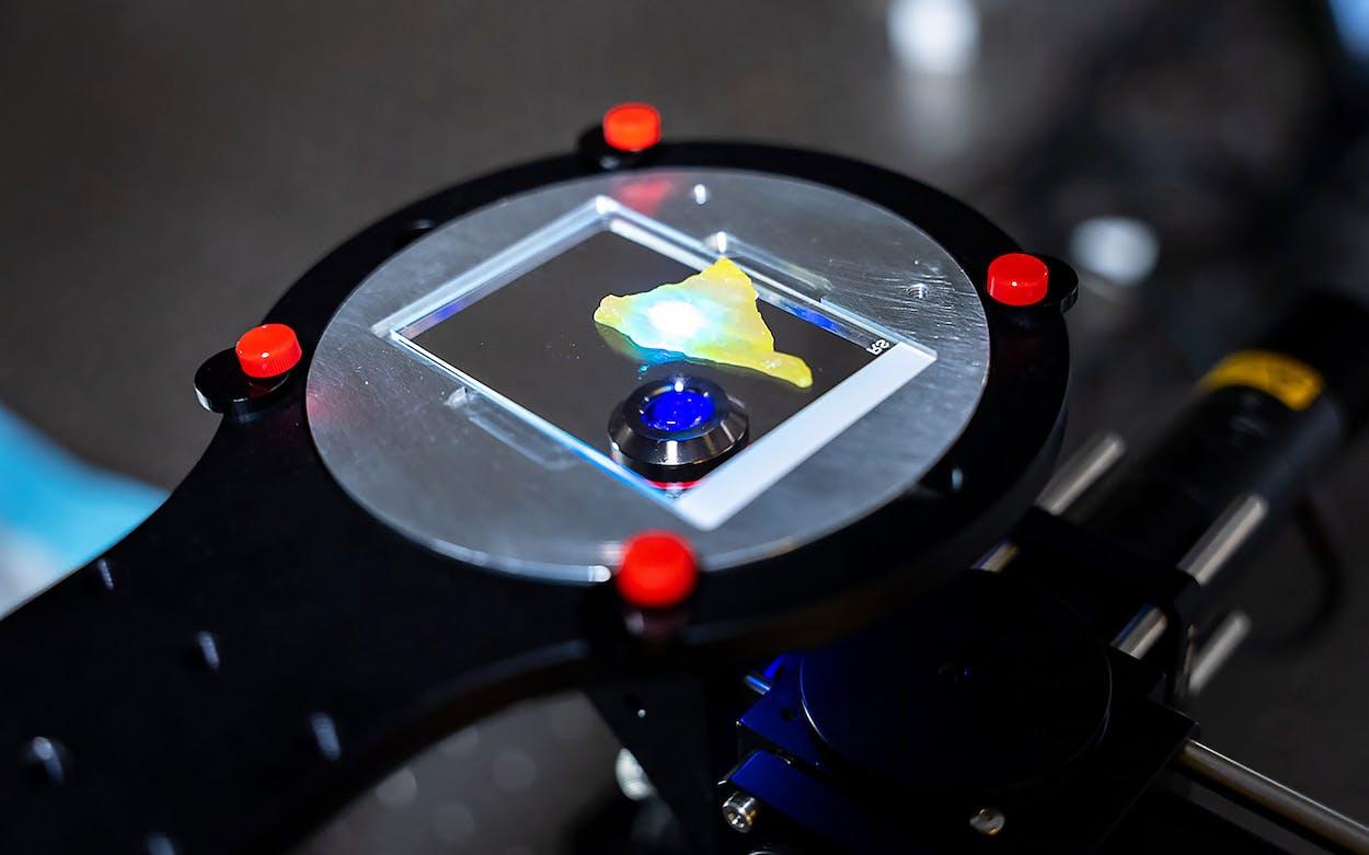 rice-ai-microscope