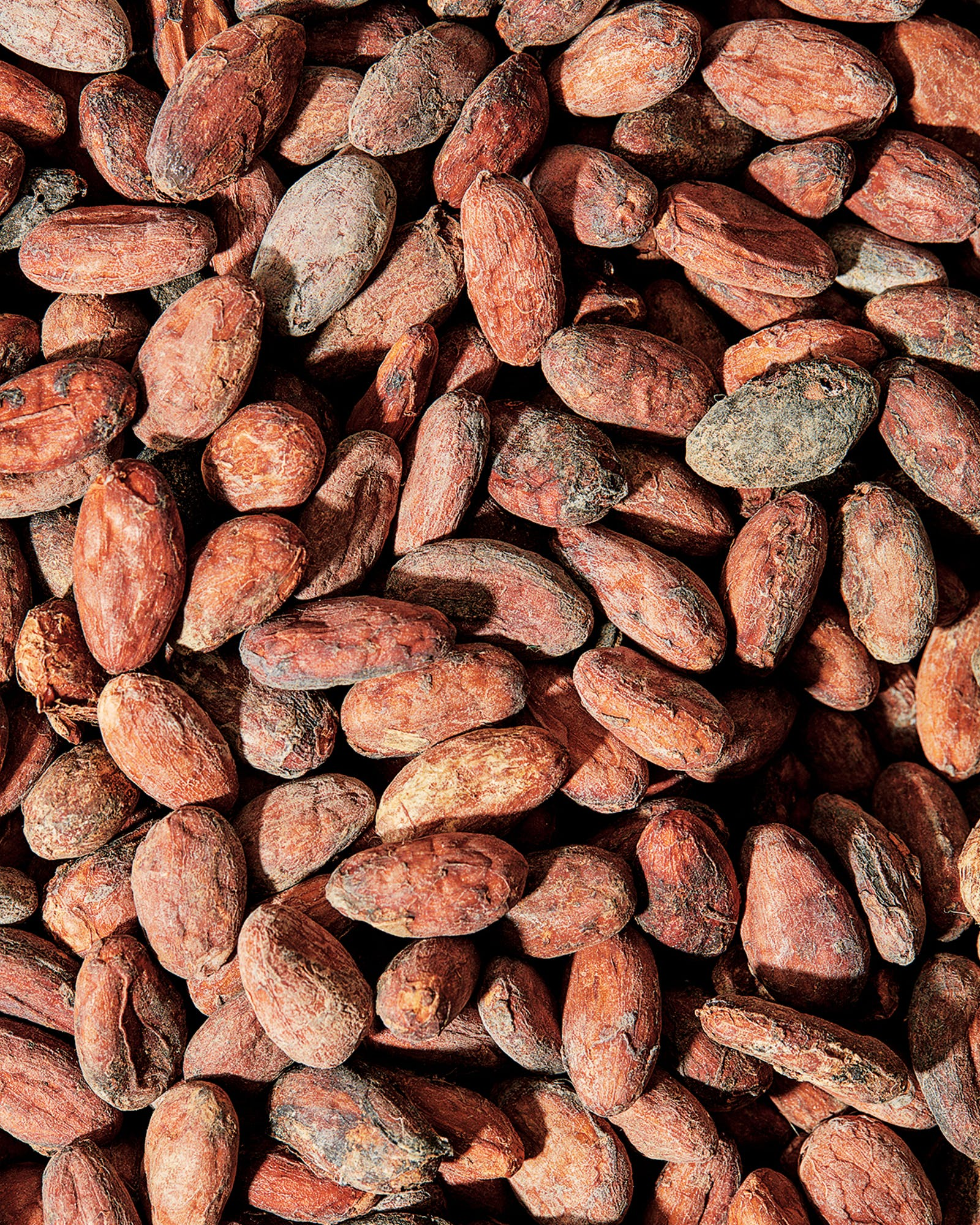 tejas-chocolates-&-barbecue-raw-cocoa-beans