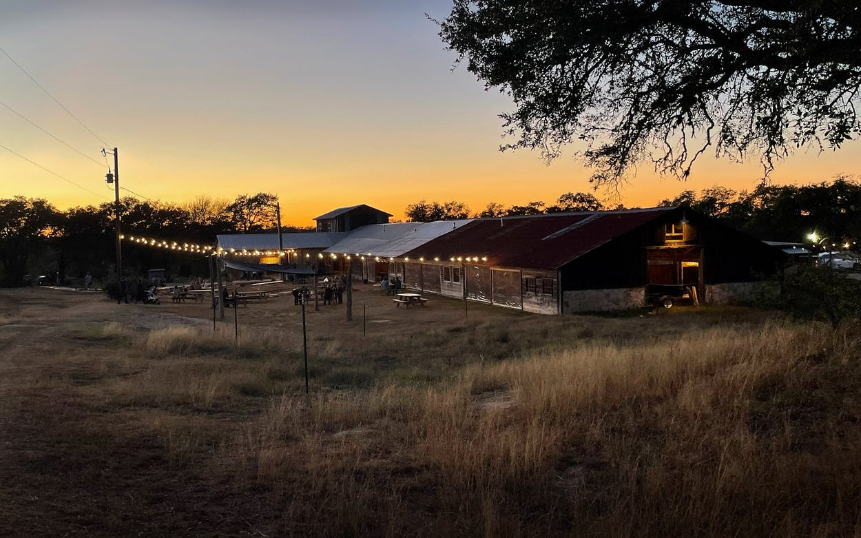 An overview of Jester King's Pole Barn, November 2020.