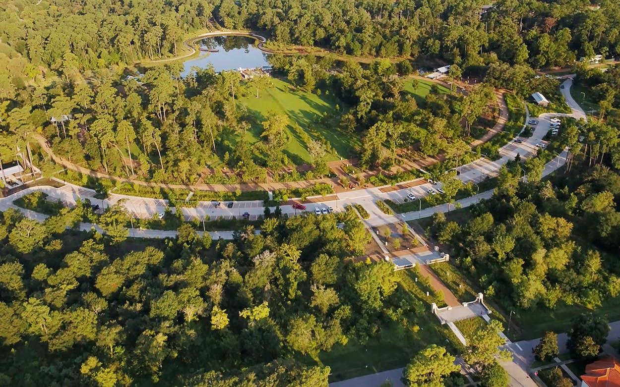 memorial-park-redesign-blossom-axis