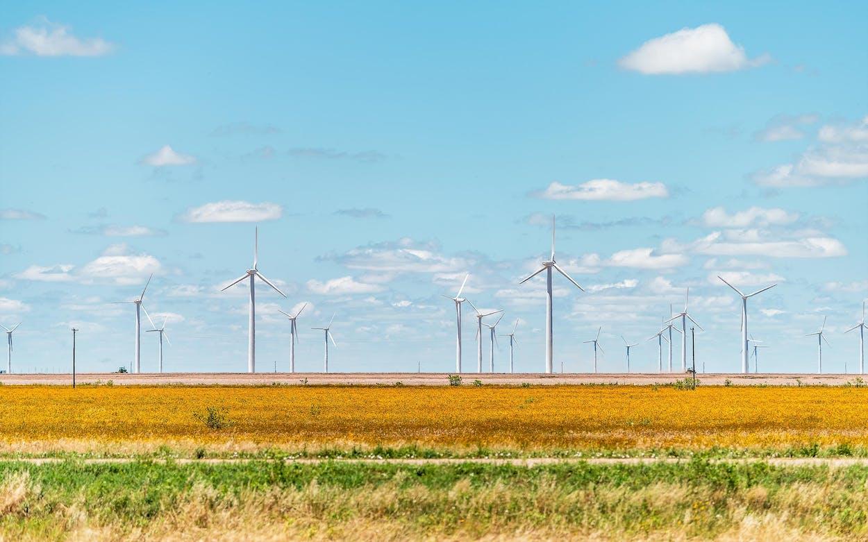 small-town-trip-windmills