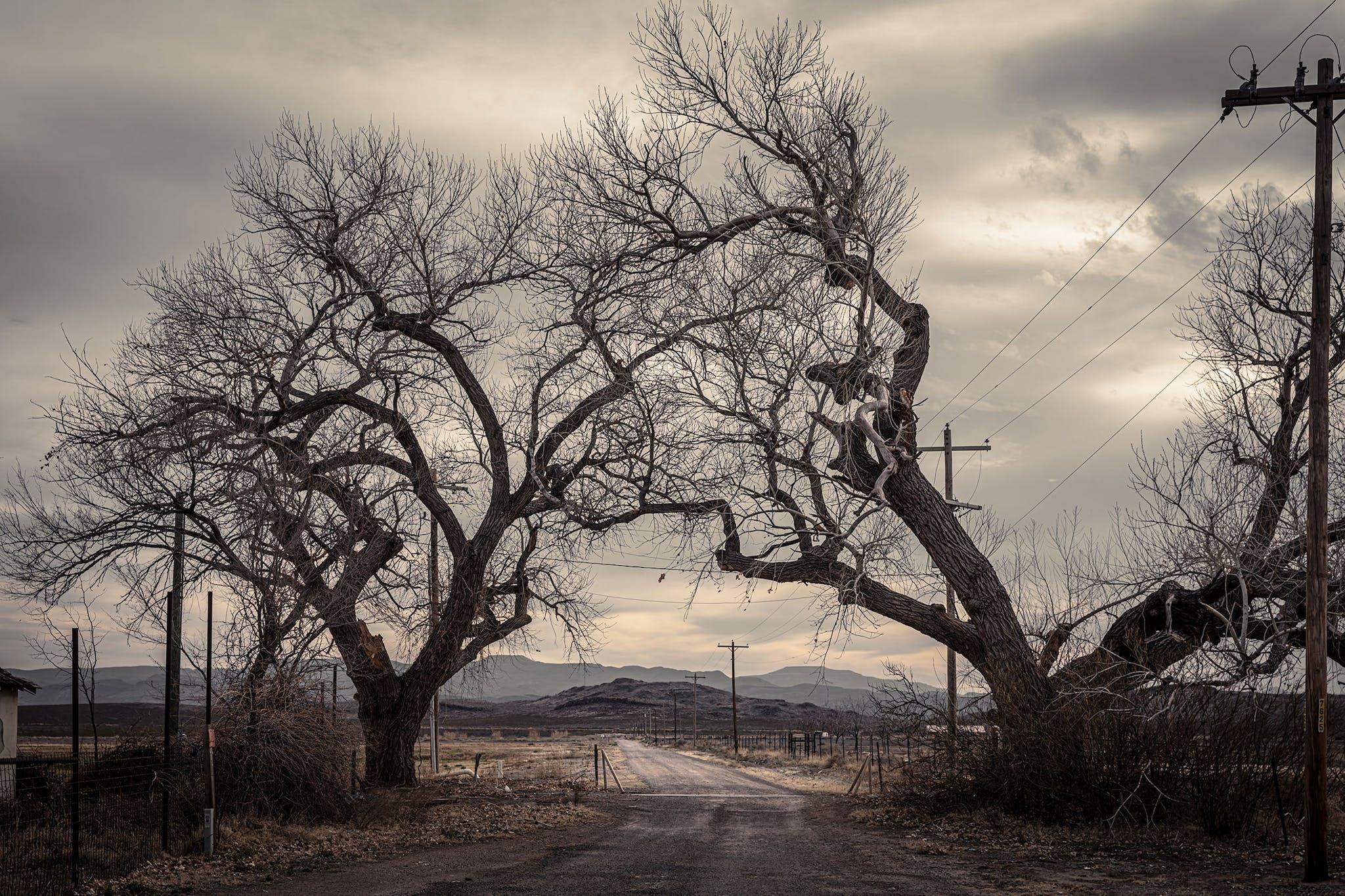 Caliche road outside Balmorhea.