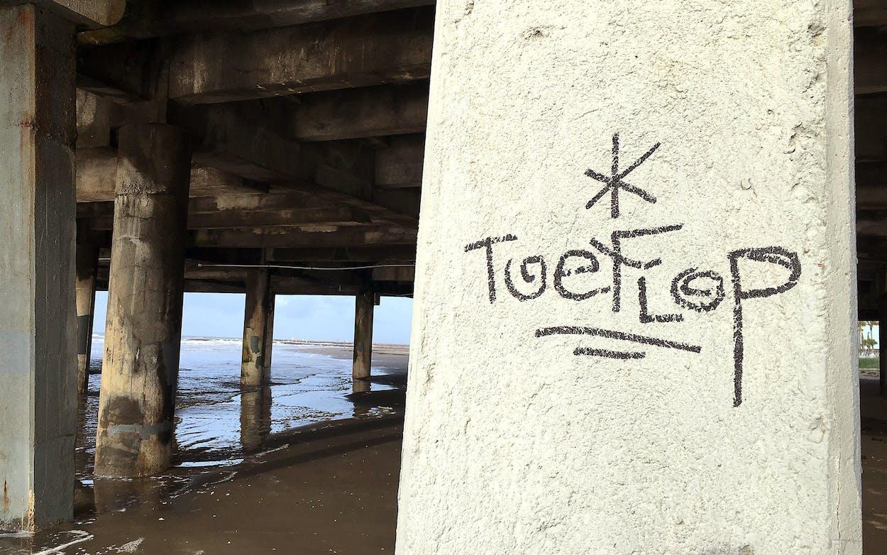 A Toeflop sighting under Pleasure Pier in Galveston.