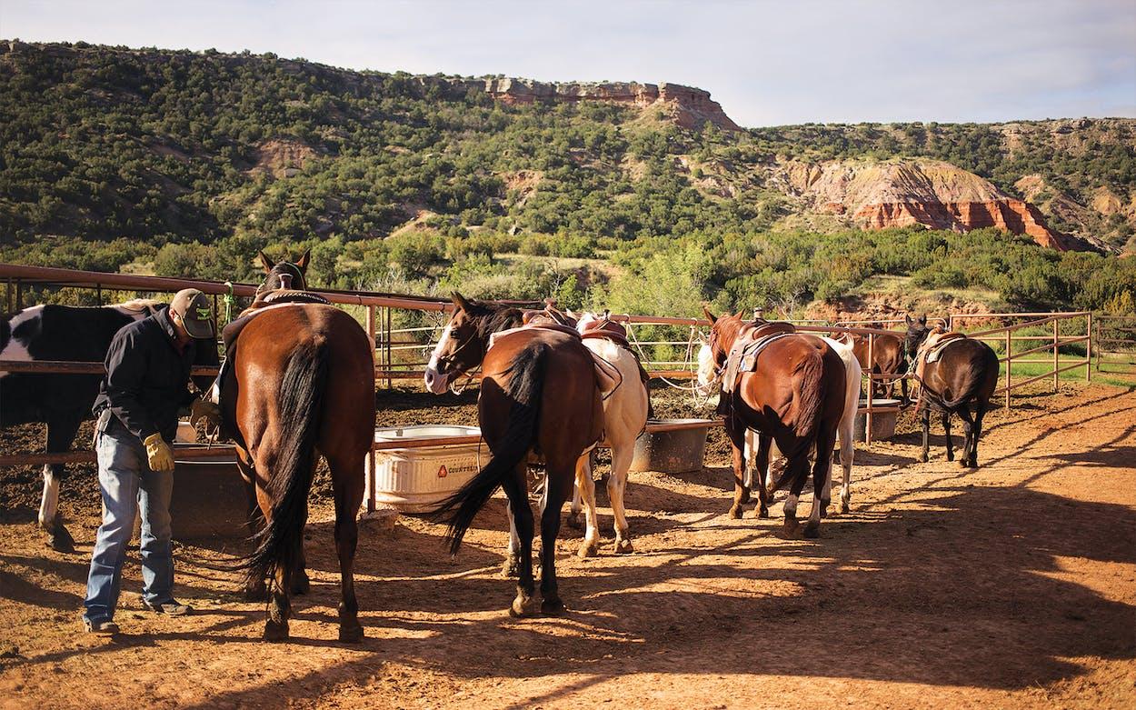horseback riding palo duro canyon