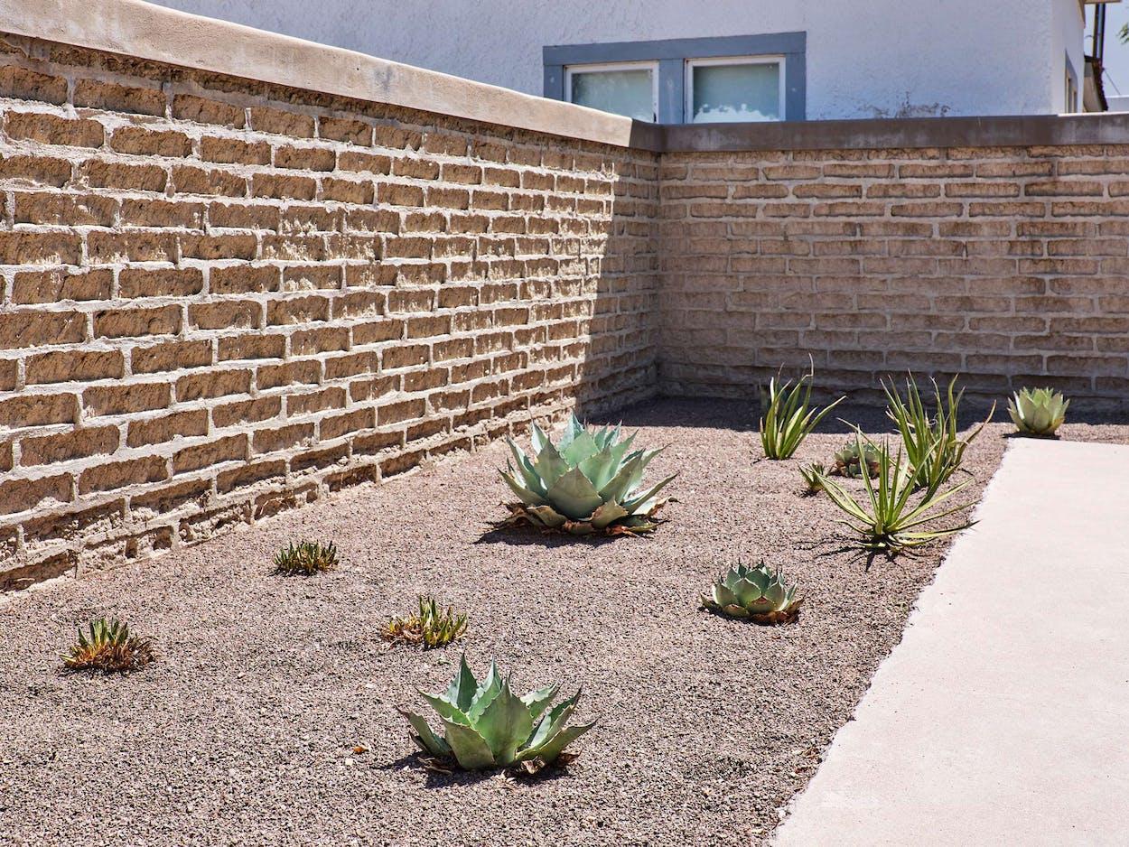 Judd Foundation Agave Garden, Marfa, Texas.