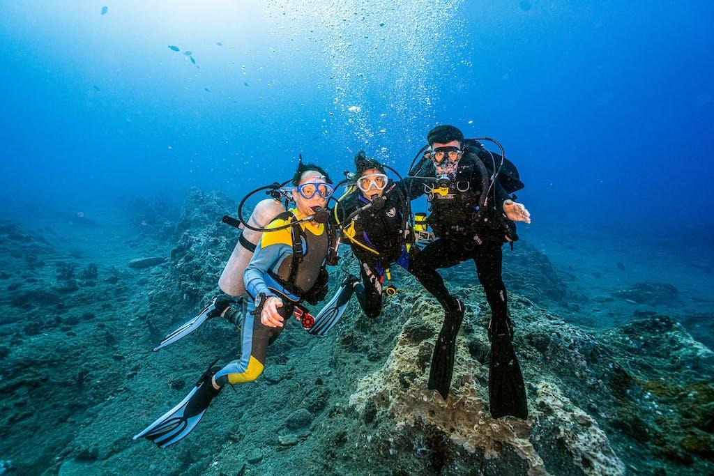 Keith Fern, writer Juli Berwald, and Ben Fern underwater at Stetson Bank on June 15, 2021.