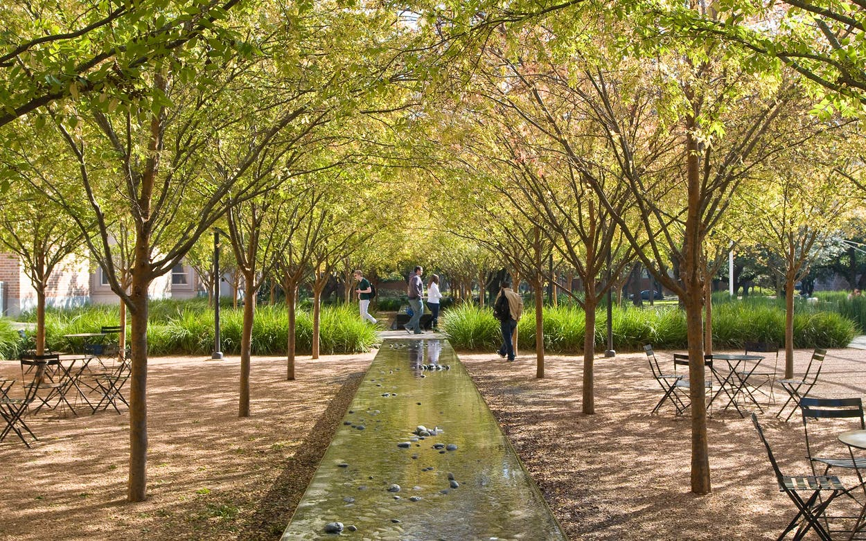 Gardening for a warmer climate OJB