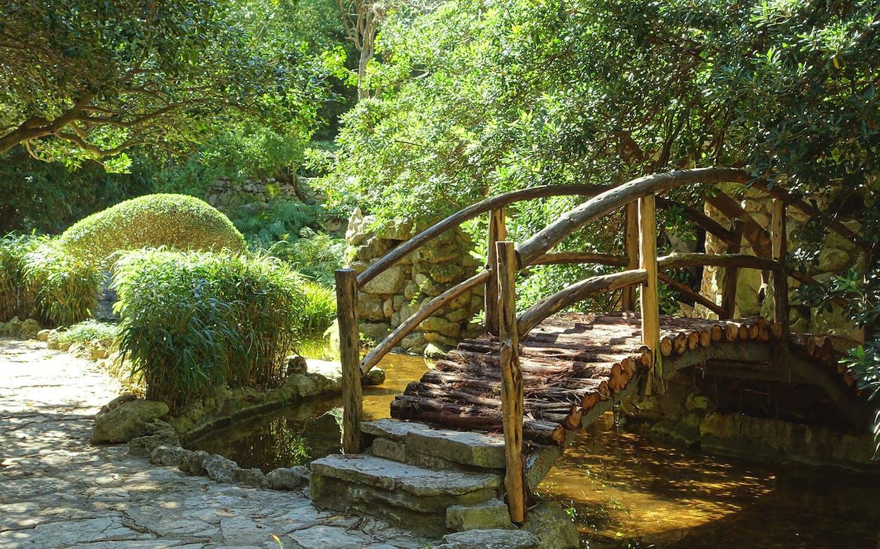 Tex Zen Taniguchi Oriental Garden Austin
