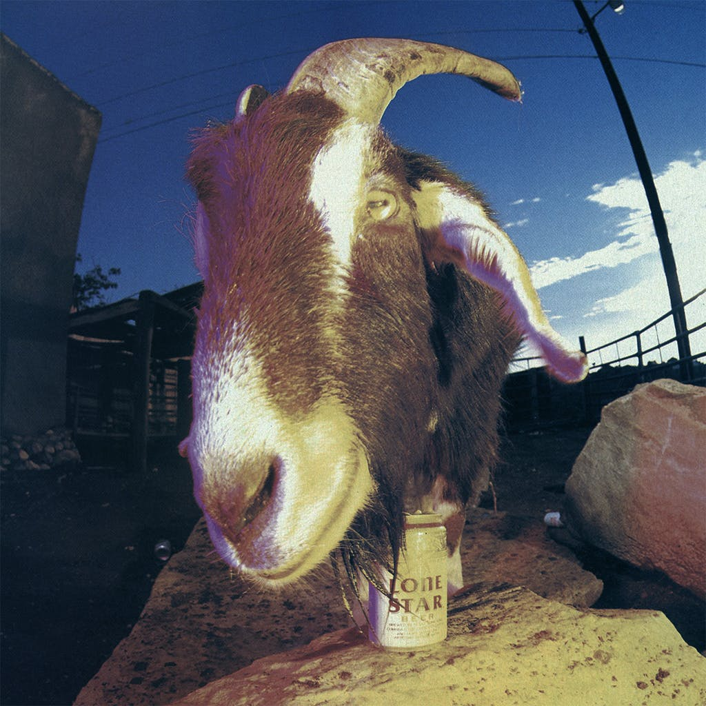 Animal Attractions Clay Henry Billy Goat